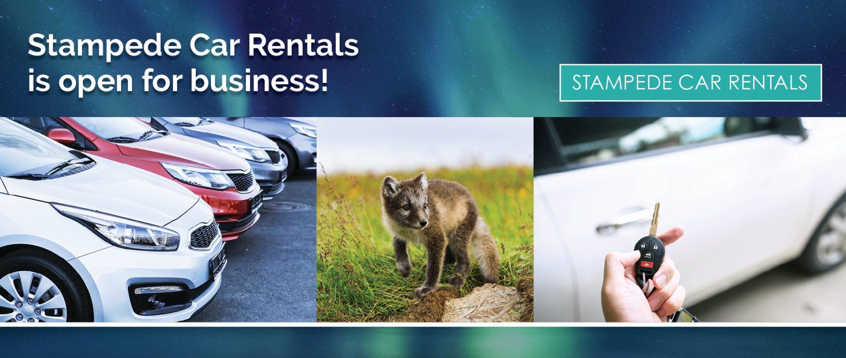 Stampede Car Rental Nome